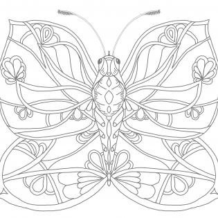 Schmetterling mit fantasievollem Muster auf den Flügeln